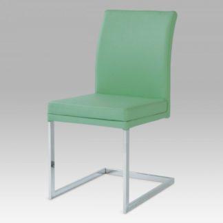 Židle SC-1816 GRN Autronic