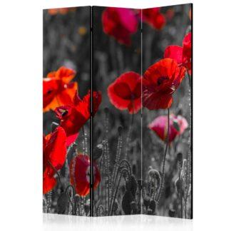 Paraván Red Poppies Dekorhome 135x172 cm (3-dílný)