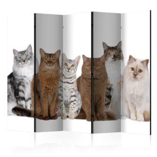 Paraván Sweet Cats Dekorhome 225x172 cm (5-dílný)