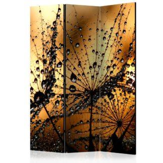 Paraván Dandelions in the Rain Dekorhome 135x172 cm (3-dílný)