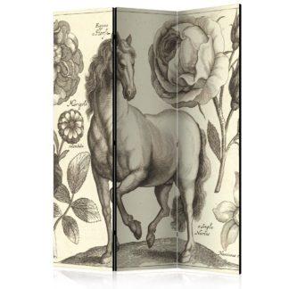 Paraván Horse Dekorhome 135x172 cm (3-dílný)