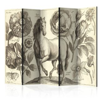 Paraván Horse Dekorhome 225x172 cm (5-dílný)
