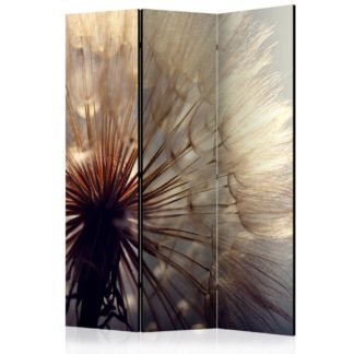 Paraván Dandelion Kiss Dekorhome 135x172 cm (3-dílný)