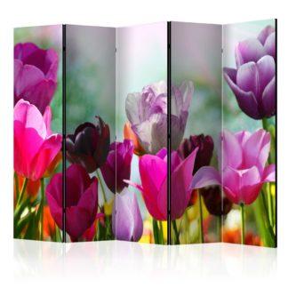 Paraván Beautiful Tulips II Dekorhome