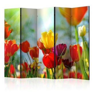 Paraván Spring Tulips II Dekorhome