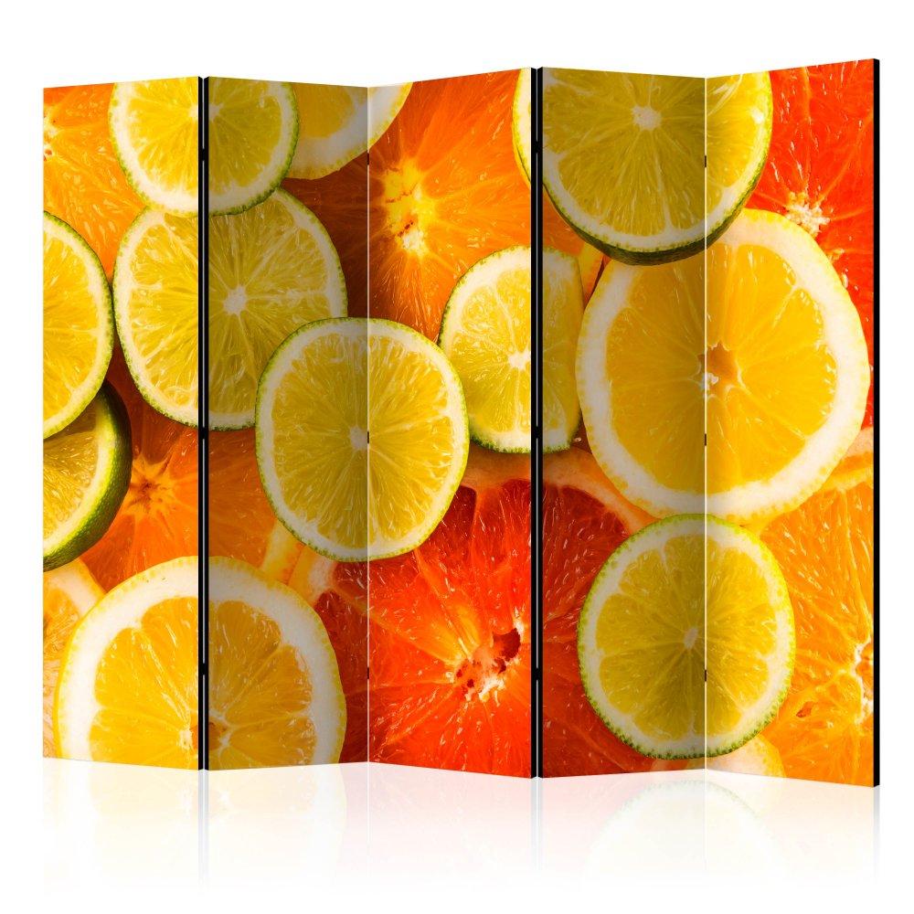 Paraván Citrus fruits Dekorhome 225x172 cm (5-dílný)