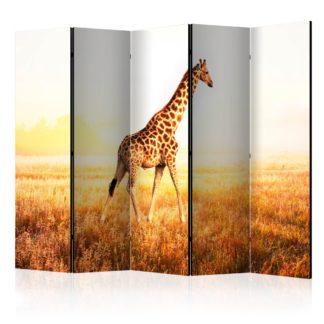 Paraván giraffe - walk Dekorhome 225x172 cm (5-dílný)