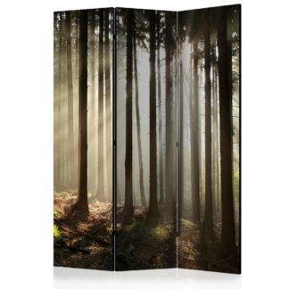 Paraván Coniferous forest Dekorhome 135x172 cm (3-dílný)