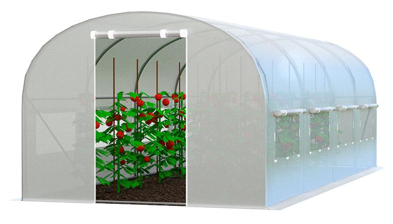 Zahradní fóliovník 2x2m zelená Bílá
